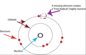 Free radicals are unpaired electrons that damage your cells.